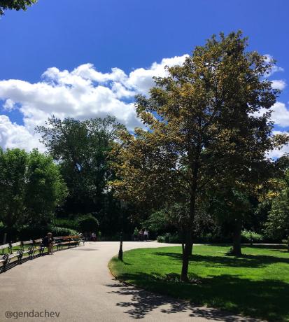 ウィーン市立公園